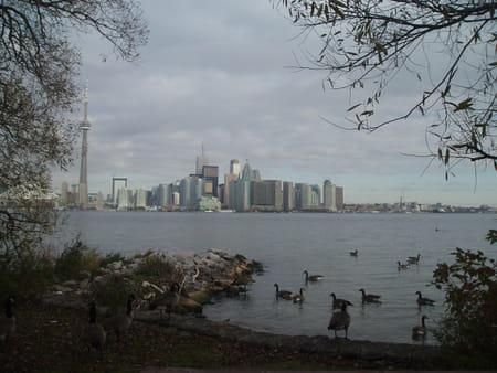 Front du lac Ontario et îles de Toronto