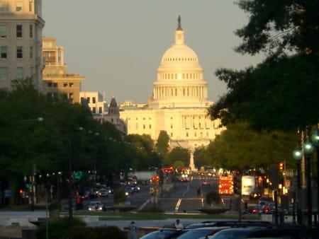 La bibliothèque du Congrès