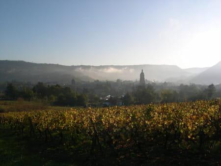 Musée de la Vigne et du Vin d'Arbois