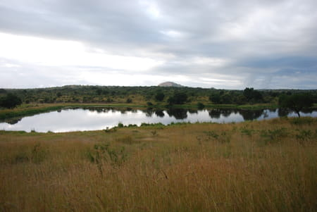 Kwazulu-Natal et provinces du Nord