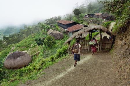 Irian Jaya et les Moluques