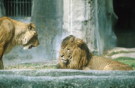 Le Parc zoologique