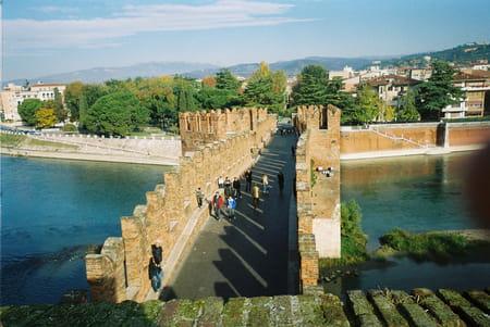 Le vieux château et le pont Scaliger