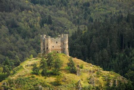 Le site du château d'Alleuze