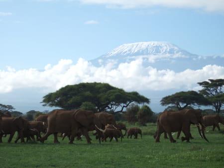 Les meilleurs treks d'Afrique