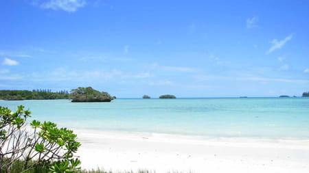 Îles de Nouvelle-Calédonie (îles loyauté, île des pins)
