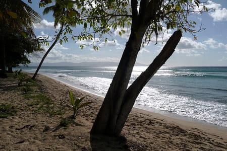 La plage du Souffleur