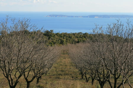 Sentier du littoral et îles de la Côte d'Azur