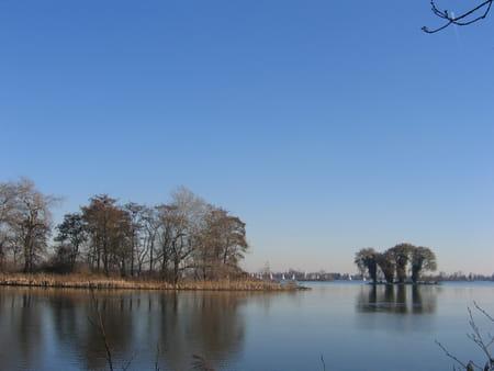 Les étangs de Reeuwijk