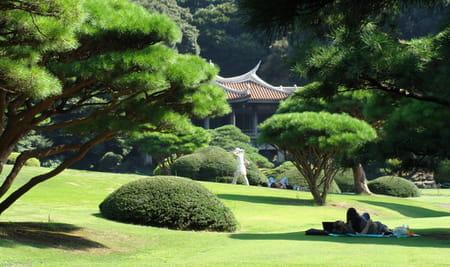 Le jardin national Shinjuku Gyoen