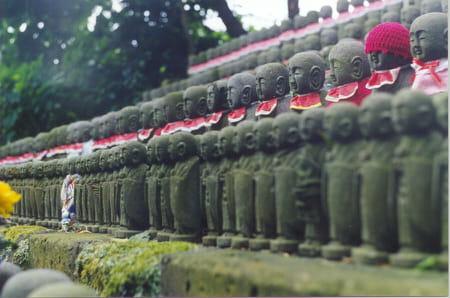 Le cimetière d'Aoyama