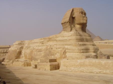 Sphinx du Caire