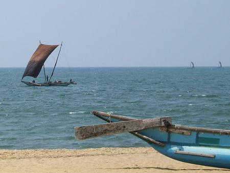 Stations balnéaires et sports de plongée du Sri Lanka