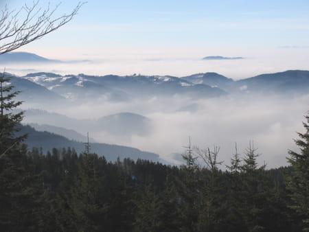 Haute Forêt-Noire