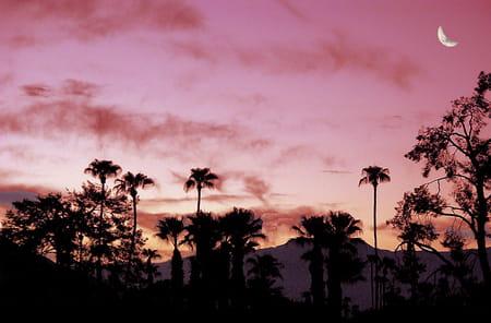 Le téléphérique de Palm Springs