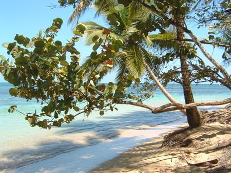Lagunes de République Dominicaine
