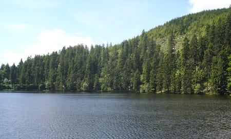 Nord de la Forêt-Noire