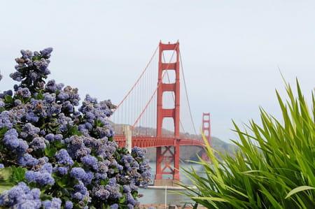 Golden Gate Park de San Francisco