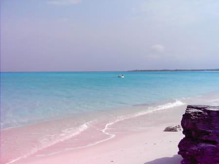Nassau, Paradise Island et Grand Bahama