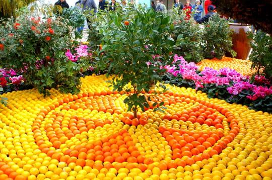 Mosaïque de citrons