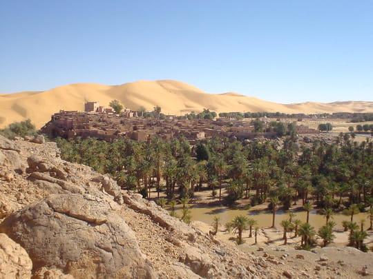 تاغيت مملكة الرمال الذهبية-جمال بلادي- Oasis-bechar-algerie-452234149-674107