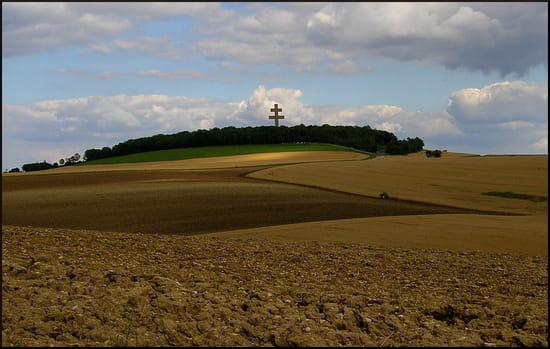 Charles de Gaulle- Colombey-les-deux-églises- Lille- Paris. Agriculture-colombey-les-deux-eglises-france-1232172201-1226703