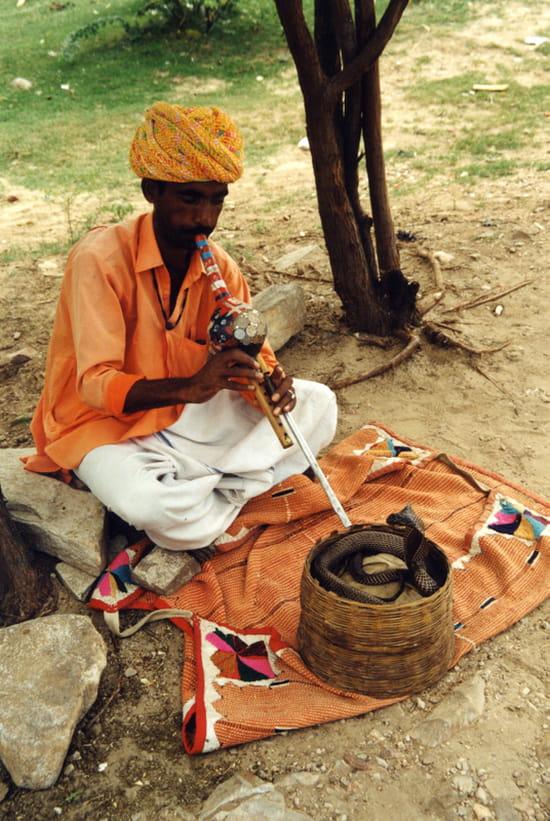 Charmeur de serpent - Le serpent est sourd donc il ne peut être guidé par la musique.