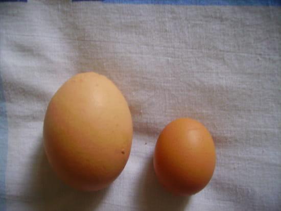 Un petit oeuf deux petits oeufs le blog de tina for Oeuf de poule mou
