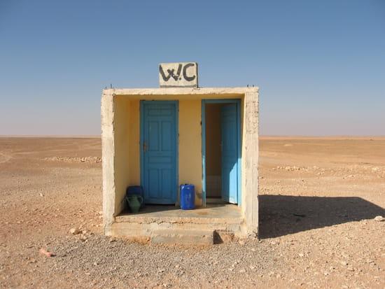 INSOLITE... dans AU FIL DES JOURS autres-insolite-tunisie-1193033254-1206556