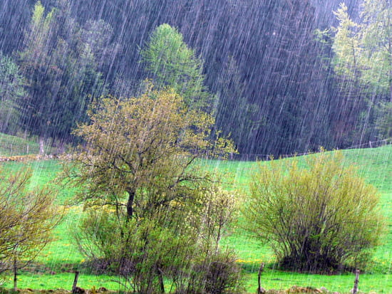 Jour de pluie. dans Liens autres-paysages-metabief-france-1164771058-1225645