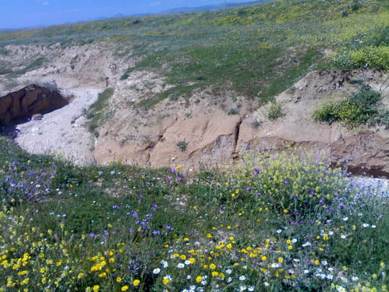بلديتي بئــر الـــعاتـــــــــــــــــ ـر*/* تبسه autres-paysages-tebessa-algerie-1407926459-1318089.jpg