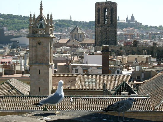 سياحة بلاد الأندلس المغصوبة إسبانيا autres-villes-barcel