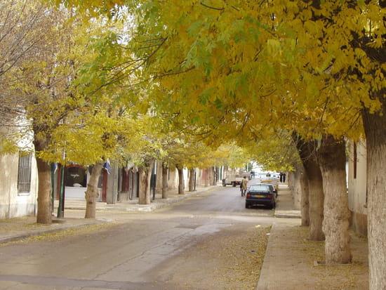 مدينة خنشلة ... معلومات عامة شاملة Autres-villes-khenchela-algerie-1389376534-1225426