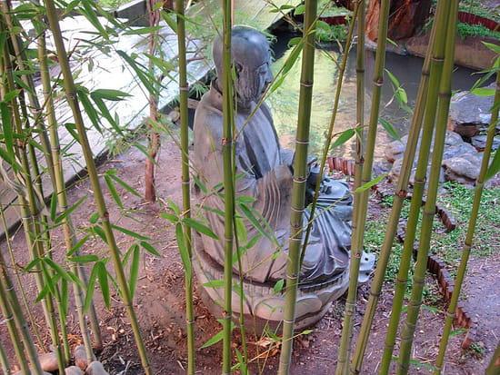 Images de Bienêtre - Page 2 Bambous-bouddhisme-jardins-prives-paris-france-2866021991-880709