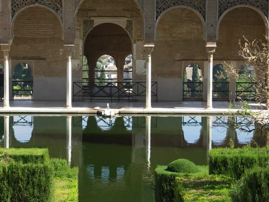 قصر الحمراء.. التاريخ بعينه.. Chateaux-jardins-prives-parcs-grenade-espagne-3893243671-796718