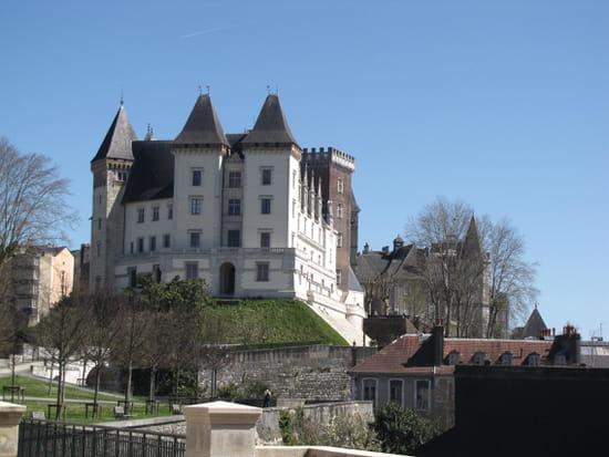 Chateau de Pau - Vue depuis le parc du chateau