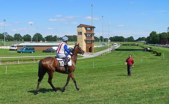 Le cheval et le jockey