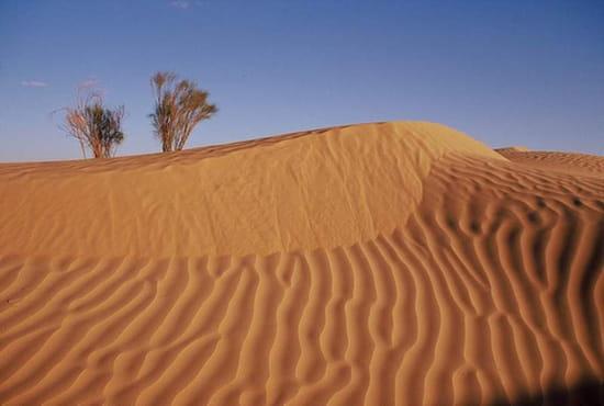 En parlant d'animation... Dunes-douz-tunisie-8762933612-408817
