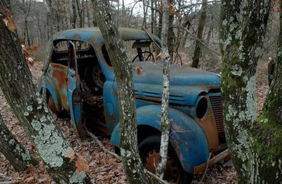 Appel à la nostalgie des épaves automobiles Epaves-citadines-forets-temperees-france-1397821308-963696
