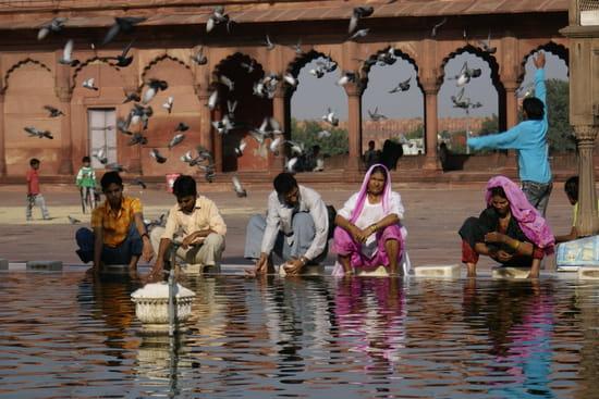 الهند ..جمال و حضارة من مختلف انواعها .. Hindouisme-delhi-inde-1047030396-1143776