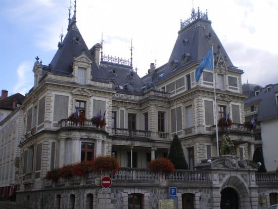 Villes et villages en cartes postales anciennes .. - Page 7 Hotels-de-ville-evian-les-bains-france-1366757905-1341301