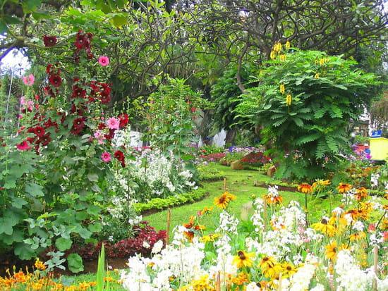 فونشال البرتغالية jardins-prives-parcs