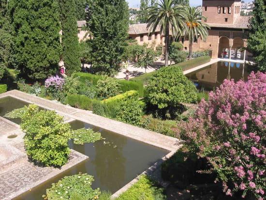 قصر الحمراء.. التاريخ بعينه.. Jardins-prives-parcs-grenade-espagne-4232904315-438014