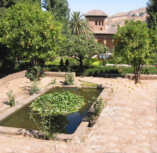 قصر الحمراء.. التاريخ بعينه.. Jardins-prives-parcs-grenade-espagne-4581109882-439433