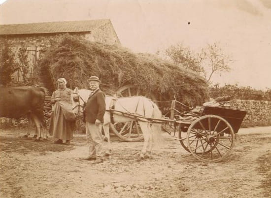 Le pharmacien de Chauvigny - Benjamin Hubault et sa voiture à cheval