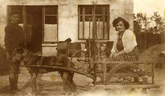 """Voiture à chien au Poteau - Emilie Bouvarel, (l'épouse d'Eugène Massot) dans la """"Voiture à chien""""...<br> Le Poteau 1940"""