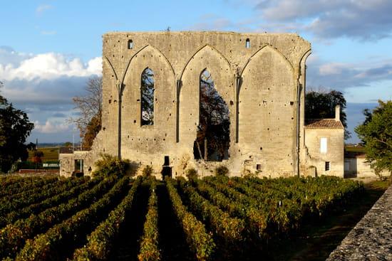 http://image-photos.linternaute.com/image_photo/550/murailles-saint-emilion-france-1089165075-1258611.jpg