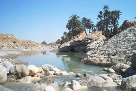 خنشلة جوهرة الاوراس oasis-rivieres-autre