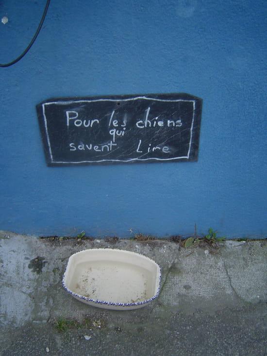 Live Foot ! - Page 26 Panneaux-insolites-ile-aux-moines-france-1122231755-1130754