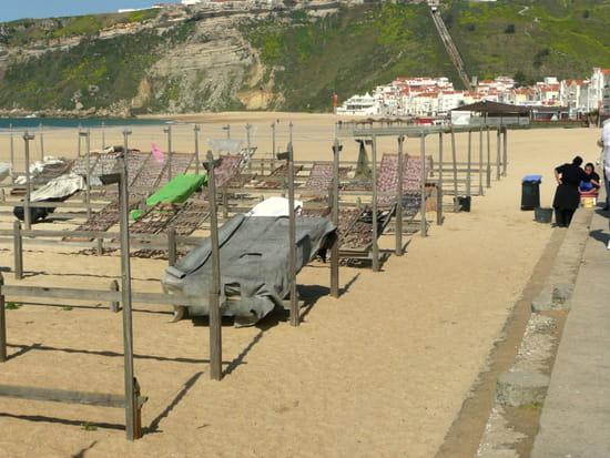 Nazaré au Portugal - Poissons séchés sur la plage.